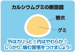 カルシウムグミ評判.png